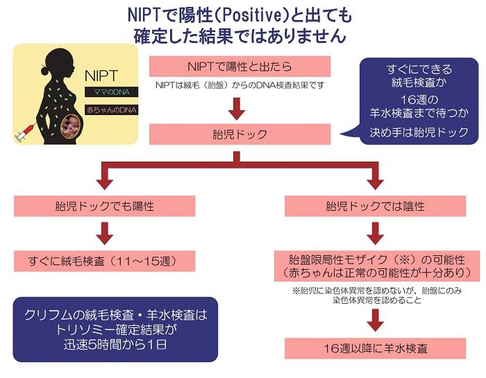 NIPTとは
